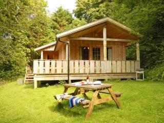 Y Berllan Log Cabin, Newport -Trefdraeth