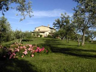 VILLA LE MORE, Collepepe
