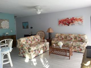 Large 1br/1ba vacation rental condo (780 Sq.Ft.)