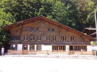325 Year Old Chalet, Interlaken/Gstaad, Boltigen