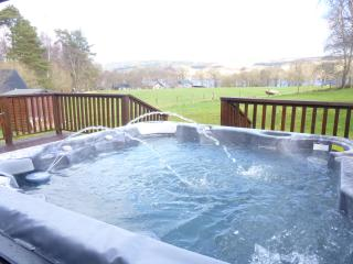Electric hot tub with loch view