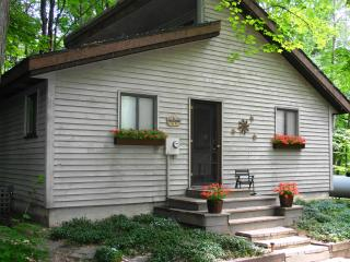 Betsie River Cabin with Up North charm   A/C WiFi, Thompsonville