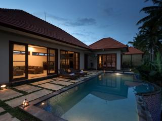 Villa GUSKU/1-2Bdr Private Pool,Ricefield view