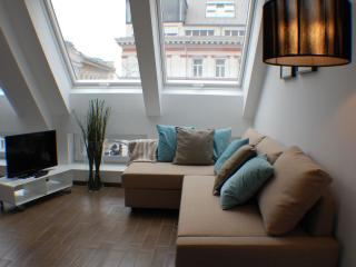Mariahilfer Top 7 apartment in 15. Rudolfsheim-Funfhaus with WiFi & lift.