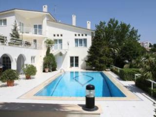 House with garden and pool, Rafina