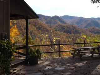 Up Up and Away- Amazing Views-Hot Tub-WB Fireplace-Fishing-Hiking-NOC 5 min., Bryson City