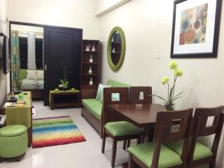 Fully Furnished Condo Located in One Pavilion Mall, Cebu City
