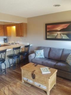 Living room/Bar/Kitchen