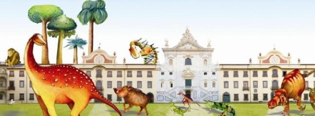 Museo di storia naturale interno Certosa