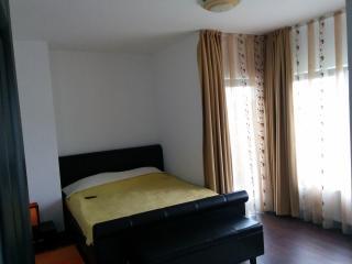 Calea Poienii Penthouse, Classic Double Room, Brasov