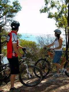 Take our free bikes to explore all the Bay Islands on the free commuter ferries.