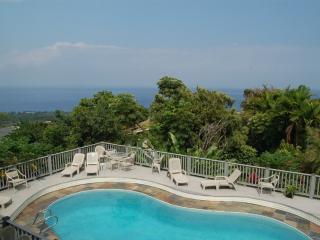 BIG Shogun Pool Home - Great Views, Close to Town, Kailua-Kona