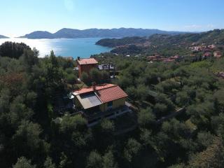 Villetta immersa negli ulivi Hill view