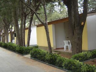 BUNGALOW APARTMENT, Marina di Camerota