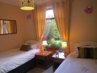 Abbey View Bed & Breakfast Double or Twin Room, Galway