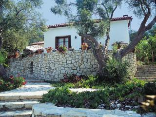 Villa Emmy, Paxos - with private pool & W-Fi !!!