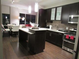LUXURY 2BR Apartment in The Reston Center