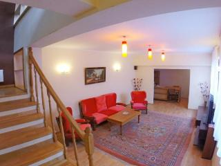 Fantastic Villa, 2 Floors in Center Bucarest, Bukarest