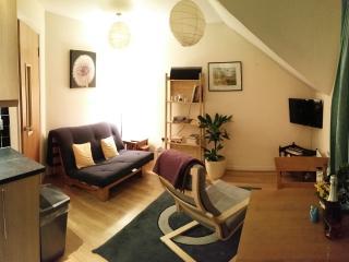 Second Floor Bijou Apartment, Belfast