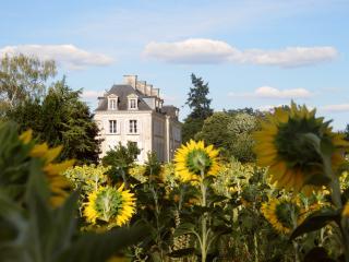 La Mothaye in the fields with sunflowers...