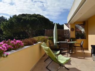 NEW PINE TREE AND POOL APARTMENT, Cascais