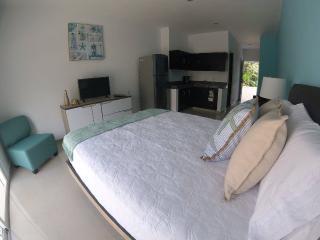 Luxury Suite near Chankanaab Park   Cozumel, MX