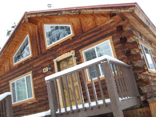 ARTIST'S COZY LOG CABIN!!, Pagosa Springs