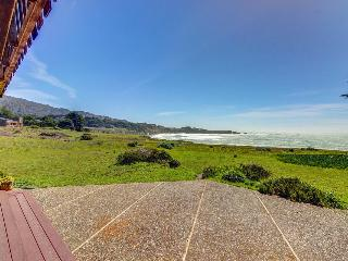 Oceanside home w/classic Sea Ranch architecture, shared pool, & 1 dog ok!