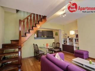 Fantastic House with Spacious Terrace in Historical Liege - 7256, Lieja