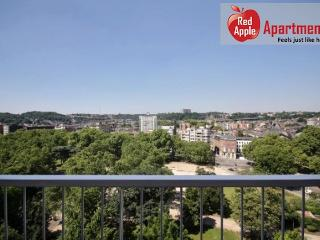 2 Bedroom Apartment with a Splendid View on the City Cent - 7257