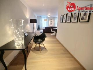 Superb 2-bedroom Apartment with Terrace in the Center - 7269, Lieja