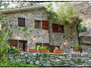 Moigo Apartments - App. Vernazza