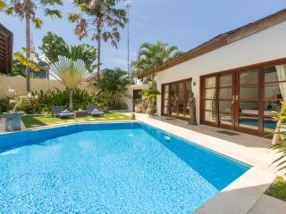 Seminyak 3 bedrooms villa - Special Rate