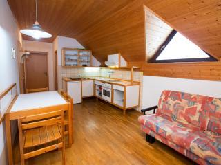 Apartment SLEC 7 (Apartment House Ob Savici), Bohinjsko Jezero