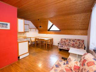 Apartment JEGLIC (Apt. Savica by Lake Bohinj), Bohinjsko Jezero