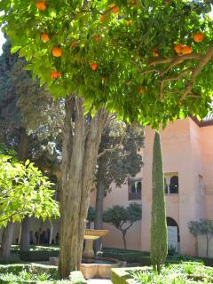 Garden in the Alhambra