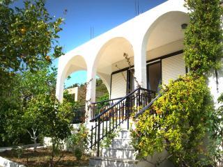 Psinthos Villa
