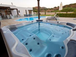 Aurai villa close to Ladiko with pool & Jacuzzi