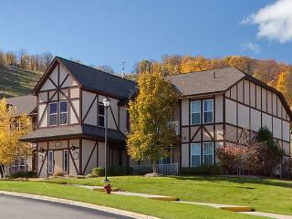 1 Bedroom Villa Mountain Run at Boyne, Boyne Falls