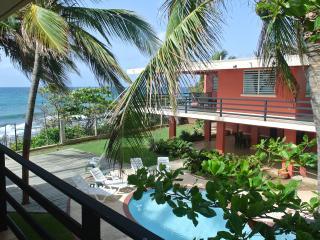 Caribbean Gem 1, Guayama