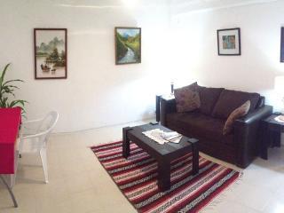 Downtown apartment Cancun, Q.Roo, Mexico, Isla Conroy
