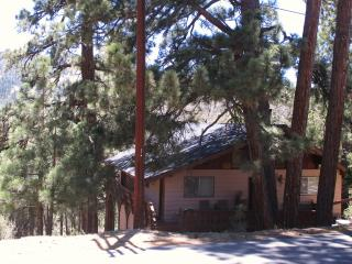 SEPTEMBER SPECIAL**FREE CLEANING - VIEWS!! WIFI, Big Bear Region