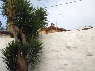 Casa de Campo, Vila do Conde