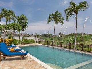 Tropical Rice Field View Villa – The Junno Villa