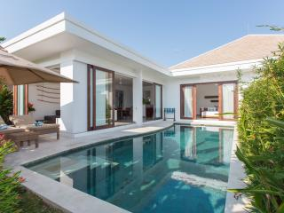 Center Seminyak 2Bedrooms Villa