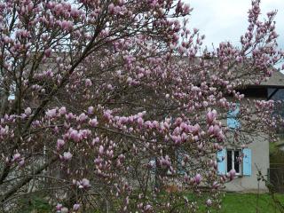 Gab's HouseVallee au coeur de la vallée de l'Arve, Thyez