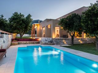 Modern villa, pool, grass and orange trees garden