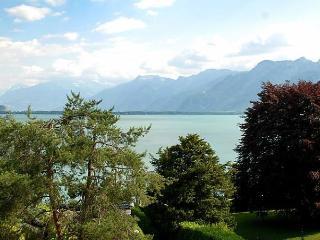 Leman Pelouse, Montreux
