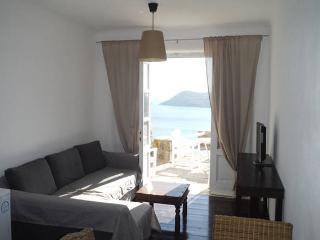 Amazing Myconian Villa3-Elia Beach