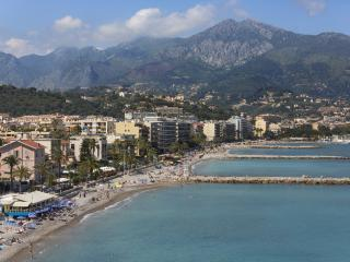 Palm Tree Apartment Near Beach Cap Martin, Roquebrune-Cap-Martin